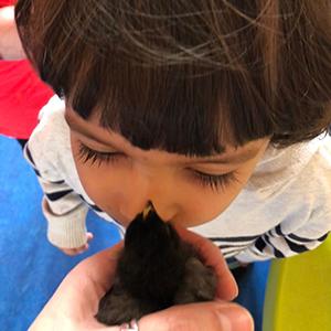 knuffelen met het vogeltje